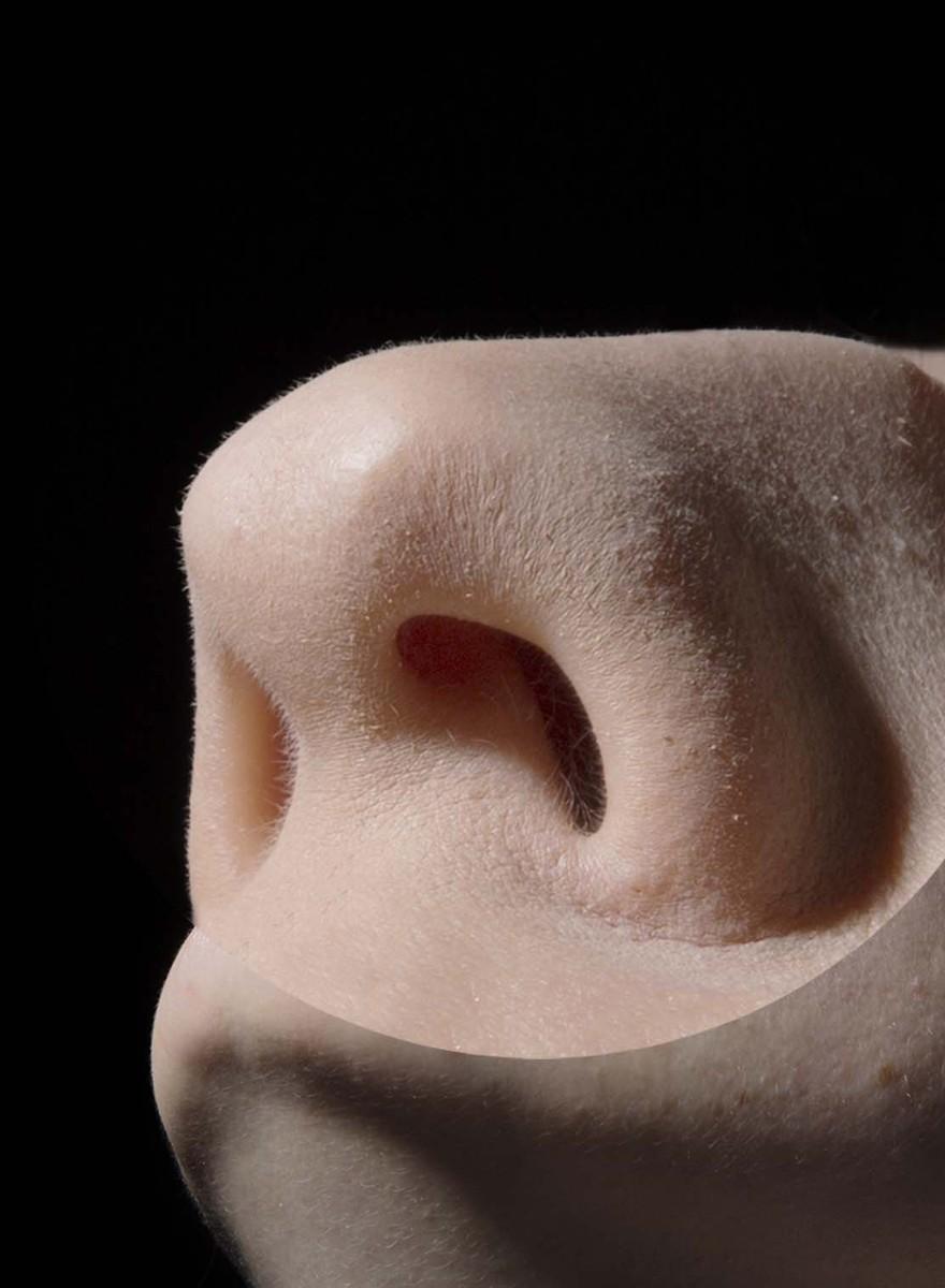 Seine Eltern beim Sex erwischen und große Nasen – peinliche Geständnisse von Fotografiestudenten