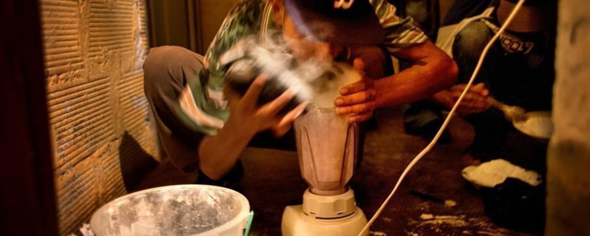 El camino de la coca: de los campos a tu nariz