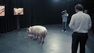 Wie eine dystopische 'Black Mirror'-Folge Camerons Schweinesex-Skandal vorhersagte