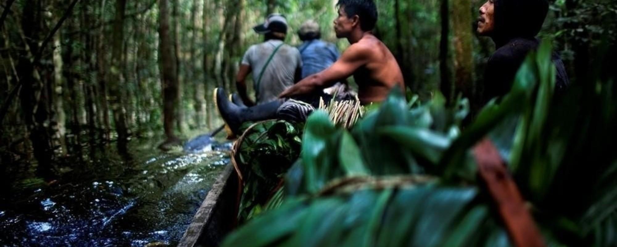Fotografando a Jornada da Cocaína das Plantações Até as Narinas do Mundo
