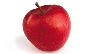 Meditace o jablku