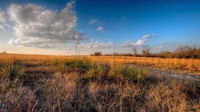 Auf den Spuren der deutschen Sprache in Texas