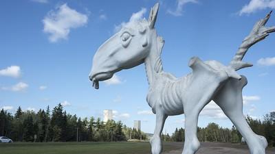 The Creepy Story Behind an Abandoned Animal Theme Park