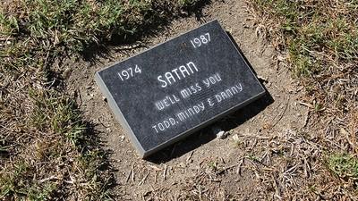 Voor altijd in ons hart: foto's van een begraafplaats voor huisdieren