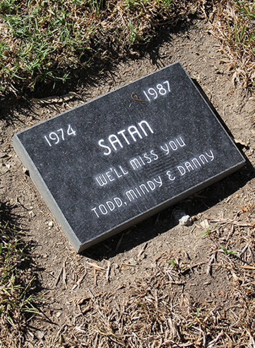 You Will Live Forever in Our Hearts: Photos From a Pet Cemetery