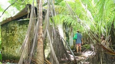 The Stolen Islands of Chagos