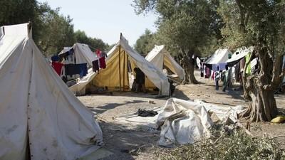 Care-s condițiile în care fiecare țară va primi refugiații din Siria