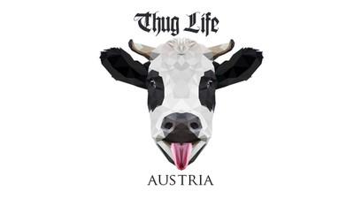 Wie Thug Life Austria das System fickt