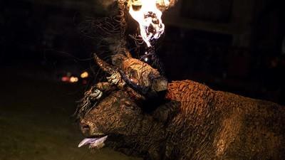 En Castilla y León siguen prendiéndole fuego a un toro para divertirse