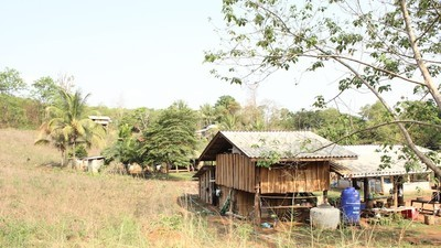 The Thai Village Where Widespread Lead Poisoning Has Destroyed Lives