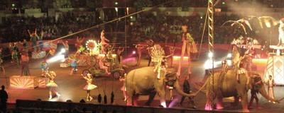 Kranker Scheiss aus dem Leben von Zirkusartisten