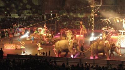 Kranker Scheiß aus dem Leben von Zirkusartisten