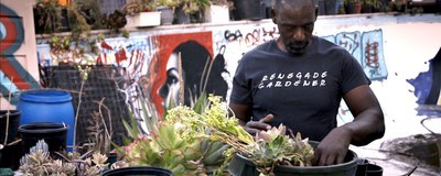 How Urban Gardening Can Save Black Communities
