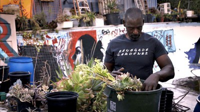 How Urban Gardening Can Save Black Communities in America