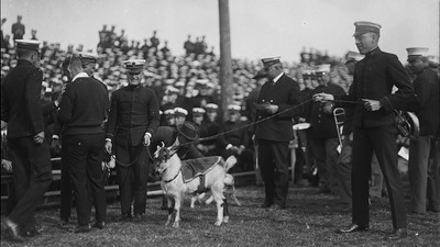 Chloroformed Goats and Stolen Mules: The Army-Navy Mascot Wars