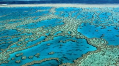 The Australian Government Just Approved Dredging the Reef, Again