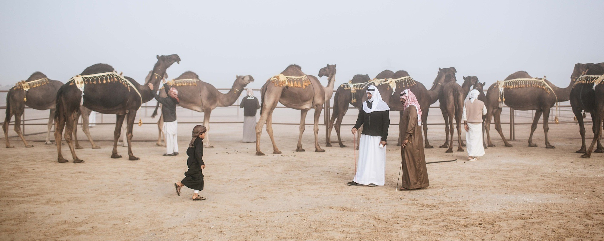 Photos from the 2015 Miss Camel Beauty Contest