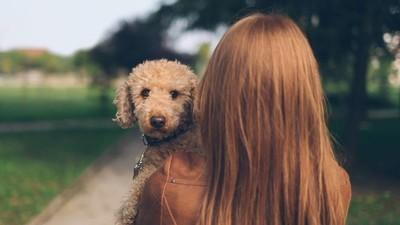 Dierlijk verlangen: vrouwen die seks hebben met dieren