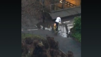 Watch the Most Important Livestream of 2016: Pedestrians Navigating a Puddle