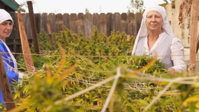 The Stoned Immaculate: Meet the Weed Nuns of the San Joaquin Valley