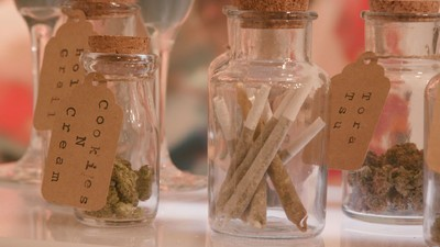 We Check Out Denver's Weed Wedding Expo on Today's 'Daily VICE'