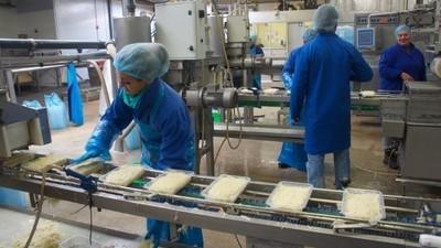 Negentig procent van alle zuurkool die je eet komt uit deze fabriek in Zuid-Scharwoude