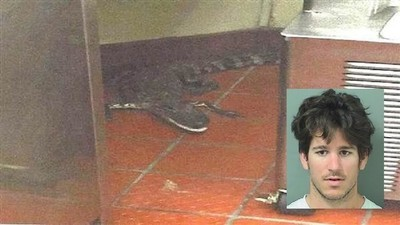 ​Florida Man Arrested For Throwing Gator Through Wendy's Drive-Thru Window