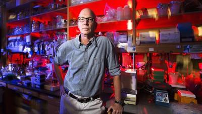 Diese Forscher haben eine Impfung gegen Drogen-Überdosen entwickelt