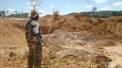 Les Montagnes d'or du Suriname