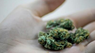 Australia Just Passed a Bill to Legalize Medical Marijuana