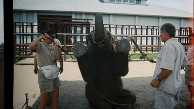 The Ringling Bros Elephant Sanctuary Is Hardly a Paradise