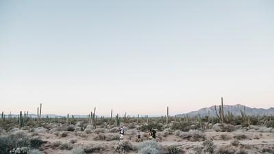Aire libre en el desierto de Sonora