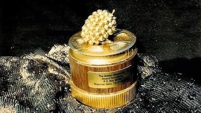 Der Gründer der Goldenen Himbeere erklärt, was die Oscars falsch machen