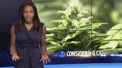 Die Moderatorin, die live im TV für ihren Gras-Aktivismus kündigte, wurde wegen 'Marihuana-Rückständen' verhaftet