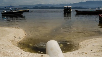 Rio's 'Bay of All Delights': The Polluted Waters of the 2016 Olympics