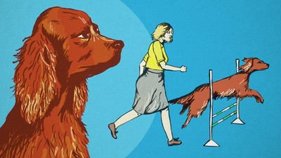 How to Murder a Prize-Winning Dog and Get Away with It