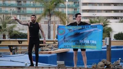 Un día con los activistas antiespecistas de Valencia