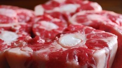 Scusate vegetariani, ma forse è grazie alla carne che ci siamo evoluti