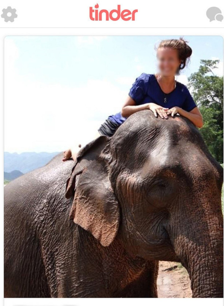 So Many Women Pose with Elephants on Tinder