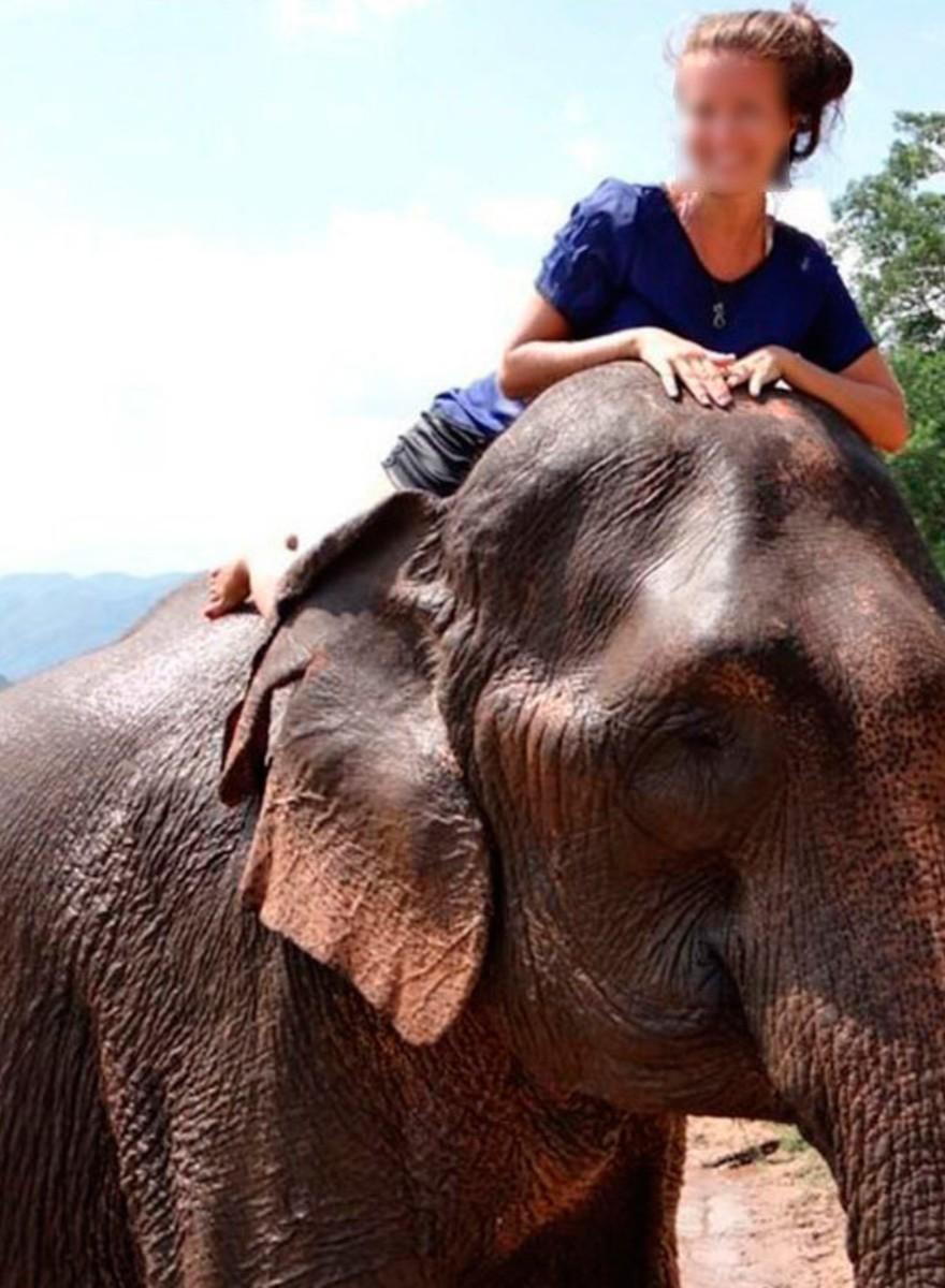 Muchas chicas en Tinder posan con elefantes