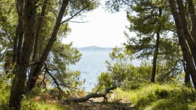 Eine kroatische Insel wird gerade zu einem Festival-Paradies umgestaltet