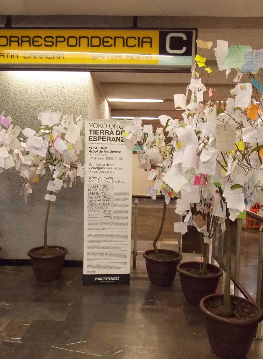 Deseos mexicanos en los árboles de Yoko Ono