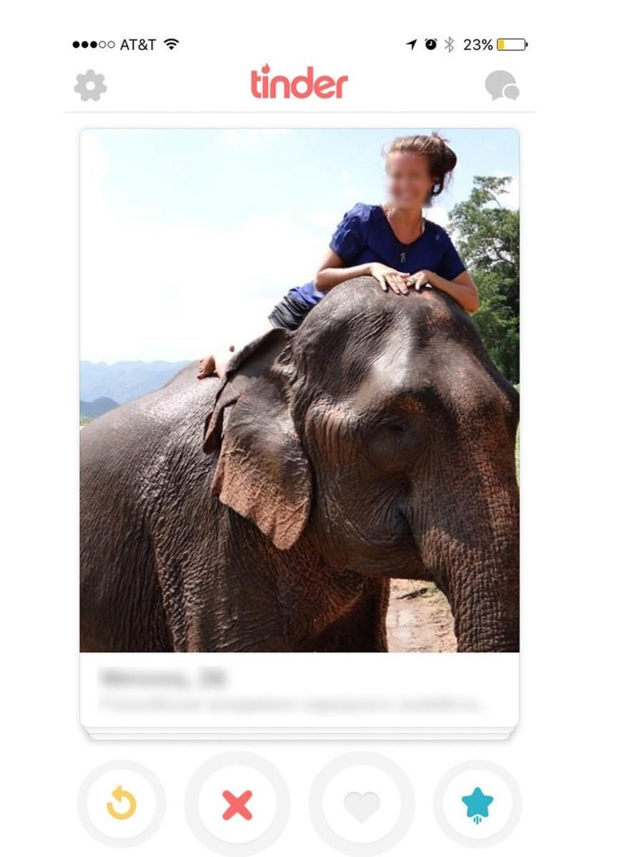Femeile încearcă să agațe pe Tinder cu poze cu elefanți