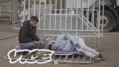 Free Rooms: A crise do alojamento de refugiados em Berlim