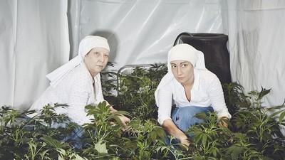 Um dia com as irmãs que cultivam erva na Califórnia
