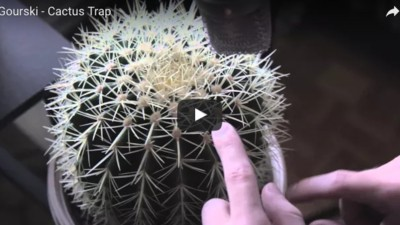 Dieser DJ produziert Trap-Beats mit seinem Kaktus