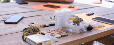 Catamos los tipos de mariguana más atascados que pudimos encontrar