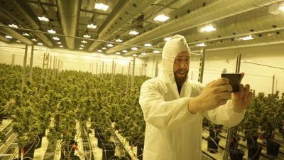 Inside Canada's Largest Medical Marijuana Grow Op with the Mad Scientists of Extracts