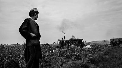 Des champs afghans aux seringues occidentales : l'itinéraire de l'héroïne à travers le monde
