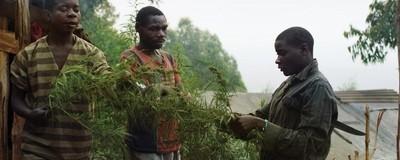 ¿Cómo sería el mundo si la marihuana fuera legal?